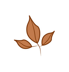three branch brown leaf cartoon autumn theme vector image