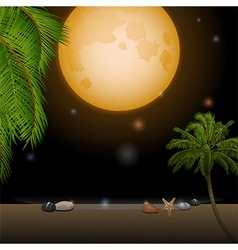 Tropical moonlight over sandy beach vector