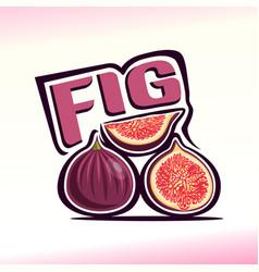 fig still life vector image vector image