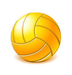 yellow water polo ball isolated on white vector image