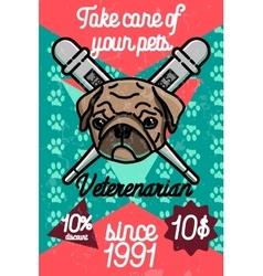 Color vintage veterinarian poster vector image