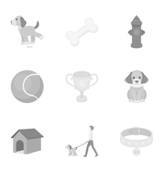 Dog equipment set icons in monochrome style Big vector image