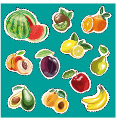 embroidery fruits collection fashion vector image