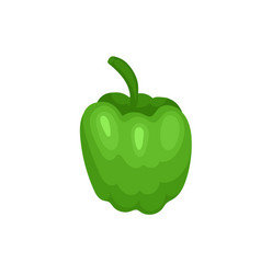 flat icon of sweet bulgarian bell pepper vector image