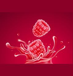 Raspberry fruits falling vector