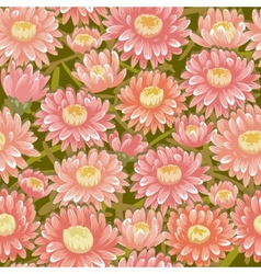 Seamless red chrysanthemum backgrounds vector image