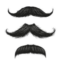 Three mustache set vector