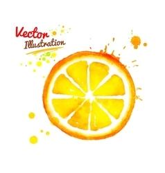 Watercolor orange vector