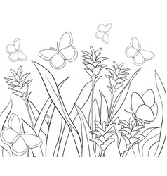 Summer Coloring Book Pages Vector Images Over 4 400