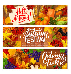 Autumn festival vegetable berry harvest banners vector