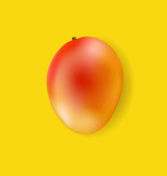banner with fruit mango vector image