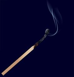 Burned match stick on dark vector image