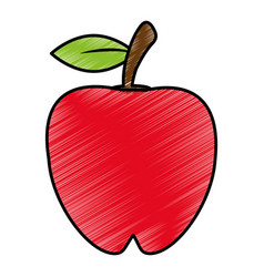 drawing apple food nutrition vector image