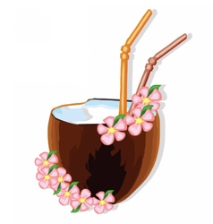 Exotic coconut cocktail vector image vector image