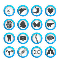 human organs and parts icon set vector image