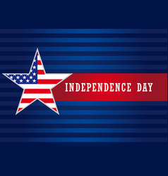 Independence day usa star banner vector
