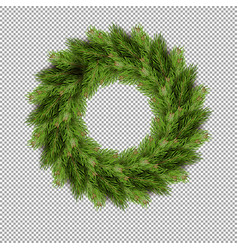 Pine tree fir spruce branch evergreen pine tree vector