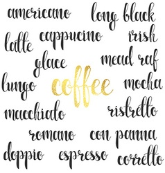 Set names species coffee in calligraphy vector