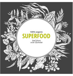superfood round banner sketch vector image
