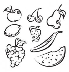 fruit and berries vector image