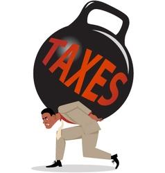 Burden of taxes vector
