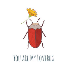 Cute hand drawn bug sticker or post card vector