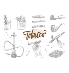 Hand drawn tobacco elements set vector