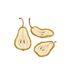 Pear dried fruits dry food snack fruit sweets vector