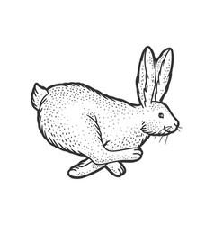 Running rabbit sketch vector