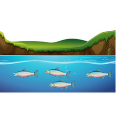 scene with fish under the river vector image