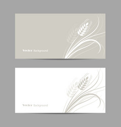 Set horizontal banners wheat spikelet on white vector