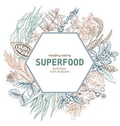 superfood hexagon banner color sketch vector image