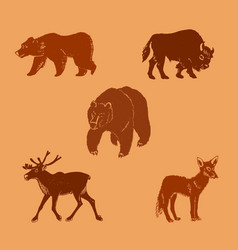 wild animalshand drawn vector image