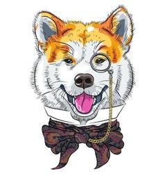 funny cartoon hipster dog Akita Inu vector image vector image