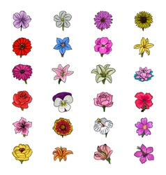 Floral Hand Drawn Colored Icons 1 vector