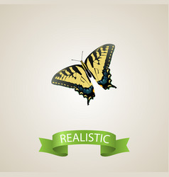 Realistic tiger swallowtail element vector