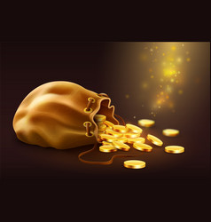 sack with spilled magic golden vector image