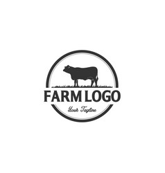 vintage angus cattle beef logo design inspiration vector image