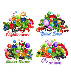 vitamins and health benefits of berries and fruits vector image