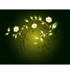 Wavy pattern of beautiful green flowers on a dark vector image