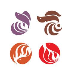 betta hobfish logo template design set vector image