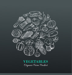 Poster with hand drawn vegetables vector