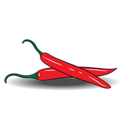 red chili peppers isolated on white background vector image