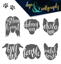 Set names of dog breeds in calligraphy handmade vector