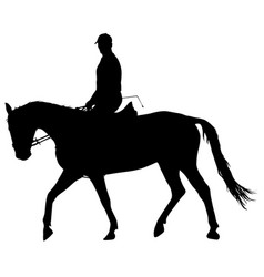 Silhouette horse and jockey vector
