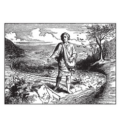 The parable of the sower - birds eat the seed by vector