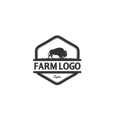buffalo or bulls logo designs vector image