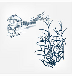 bulrush japanese paint style design sketch design vector image