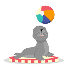 circus sea lion with ball character cartoon vector image