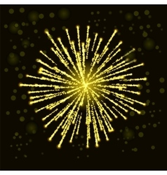 Firework Lights up the Sky vector image